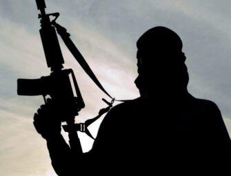 Dalla morte di Bin Laden a quella di Al Baghdadi. Dieci anni di storia del terrorismo jihadista (Europa Atlantica)